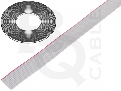 CABLE-FLAT SIVI 10 PIN-BQ
